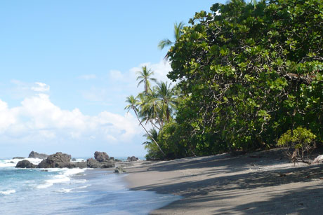 Costa Rica: Resort brief for Perowne Charles Communications