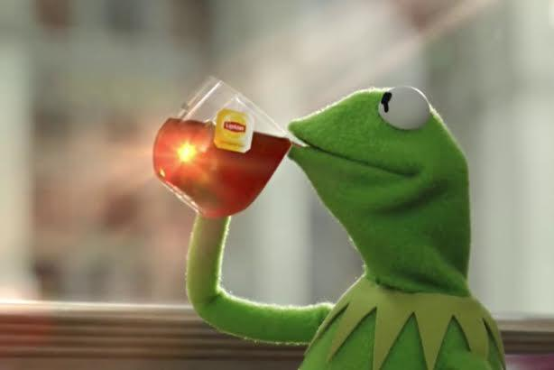 Geico, Denny's, and others respond after GMA calls Kermit ...Kermit Drinking Bleach
