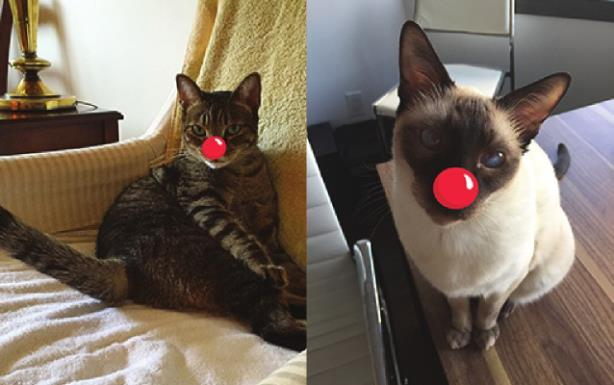 Red Nose Day supporters Sebastian and Roscoe. (Image made via the Red Nose Day app).
