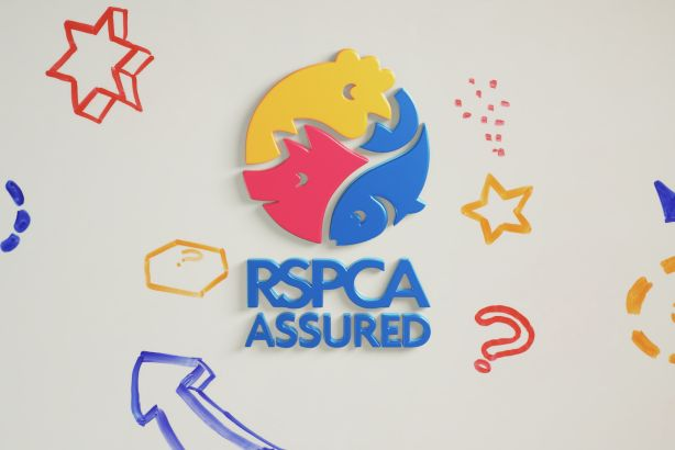 RSPCA Assured: The RSPCA's new ethical food label launches campaign for pancake day