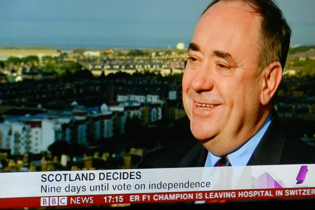 Salmond appears on BBC TV last year ahead of the referendum (Credit: Ninian Reid via flickr)