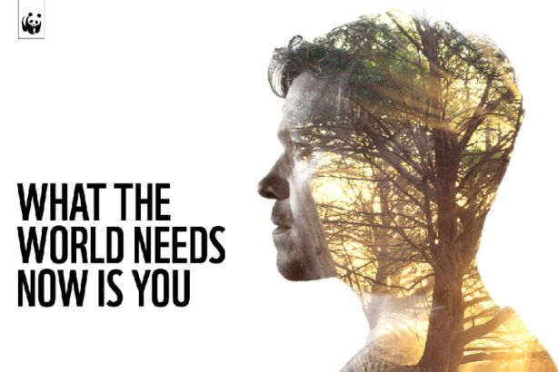 #WorldNeedsLove: WWF partners with Universal Music for Christmas campaign