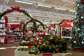 cc5c3d01bbc Not too early to open Christmas department says Haskins garden centres