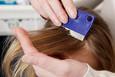 Head lice combing