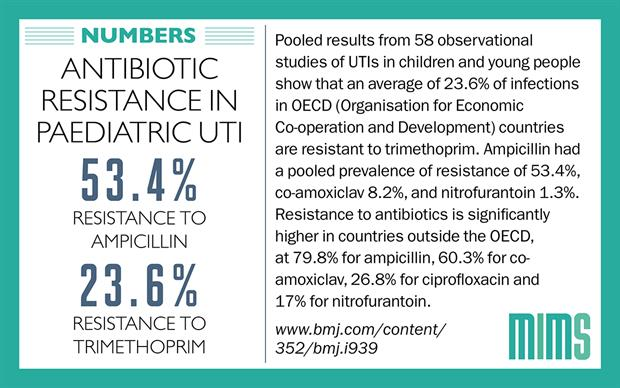 This systematic review included 58 observational studies that investigated 77783 E. coli isolates in urine.