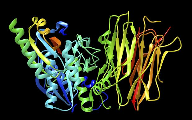 Alirocumab binds to the PCSK9 enzyme leading ultimately to reduced LDL-C levels | SCIENCE PHOTO LIBRARY