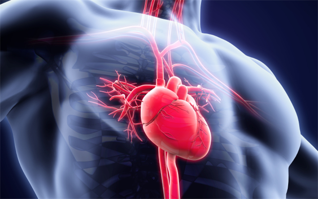 Ticagrelor is already licensed for the initial prevention of atherothrombotic events following acute coronary syndromes. | iSTOCK