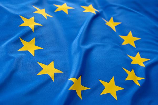 Flag, EU (photograph: Pixpack/123RF)