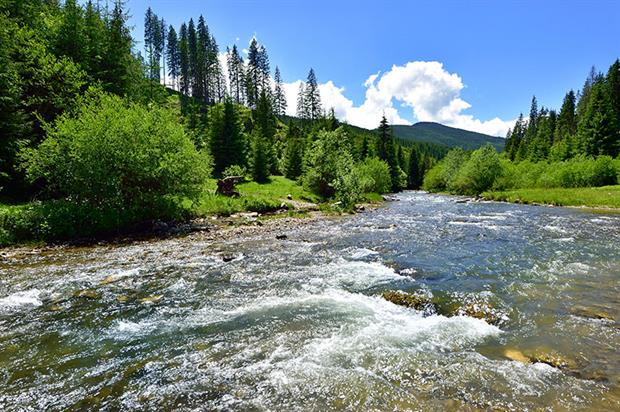 The Bistrita River near Ciocanesti, Bukovina, Romania. Photograph: Albert Ceolan/Getty Images