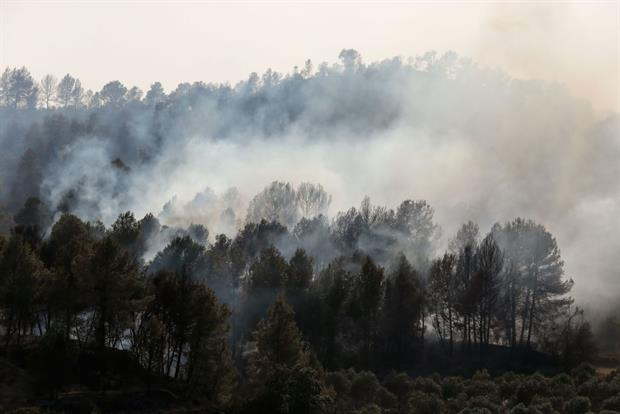 A forest fire in Catalonia, summer 2019. Campaigners are dismayed that the EU's 2030 emissions cut will include carbon sinks like forests that are increasingly under threat. Photo: Pau Barrena/AFP via Getty Images
