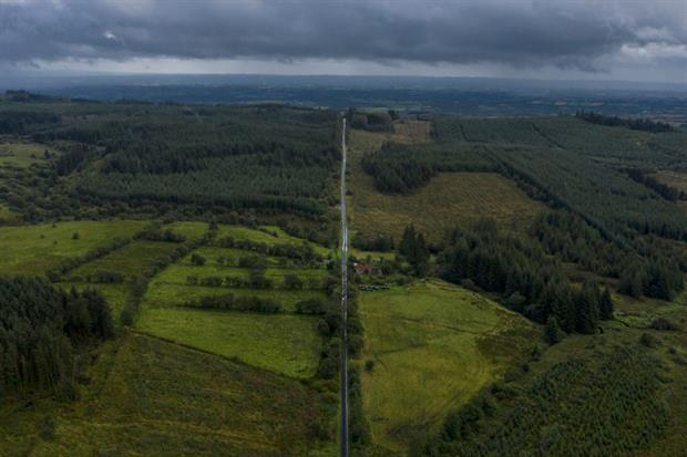 Plantation forests seen from the air at the border between Northern Ireland and the Republic of Ireland. ECA has warned much investment in tree planting goes to forest monocultures. Photo: Dan Kitwood/Getty Images