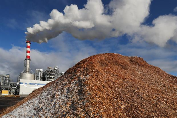 Wood chips at the IKEA's Novgorod furniture plant in Russia. Demand for woody biomass is set to grow within the EU for use in energy, construction and consumer products. Photo: Vladimir Smirnov\TASS via Getty Images