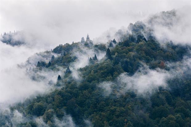 Mist rises over the Carpathians, Zakarpattia Region, western Ukraine. The EU is the largest market for Ukrainian timber. Photo: Serhii Hudak/ Ukrinform/Barcroft Media via Getty Images
