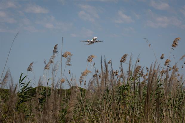 A plane takes off from Josep Tarradellas Barcelona-El Prat airport, near the natural protected area of La Ricarda, Spain, June 2021. Photo: David Zorrakino/Europa Press via Getty Images