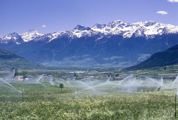 Water sprinklers on a field in Trentino, Italy. The Greens are worried that member states are seeking to use EU green funding on intensive irrigation projects. Photo: Tommaso Di Girolamo/AGF/Universal Images Group via Getty Images