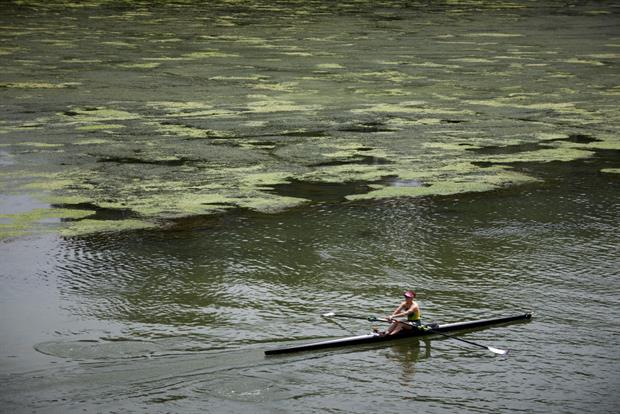 A rower on eutrophicated water in Toulouse, France. The EU auditors have urged member states to force companies to insure against damage to the environment such as water pollution. Photo: Alain Pitton/NurPhoto via Getty Images
