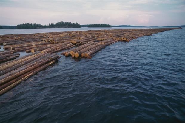 A long column of floating logs on Lake Saimaa, Finland. Campaigners and MEPs are disappointed by how forestry has been approached in the green taxonomy. Photo: Dea / V Giannella / Getty