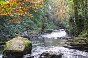 Water, river (Credit: Mark Devine CC BY-SA 2.0)