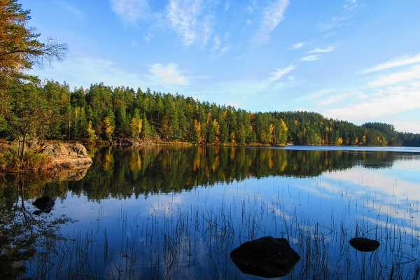 Nature: Finland - Repovesi National Park (JR)