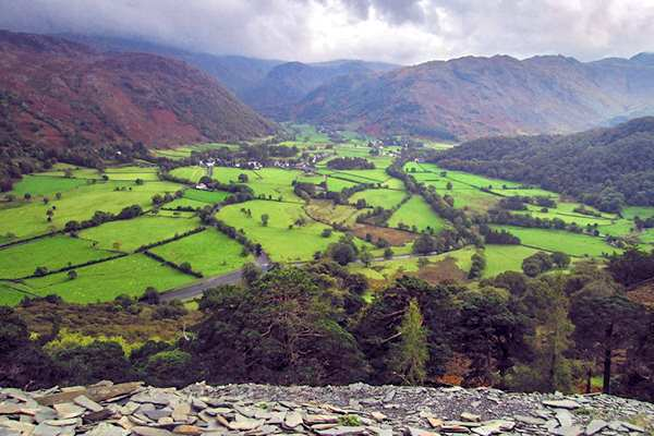 Nature: UK - Lake District 2 (JR)