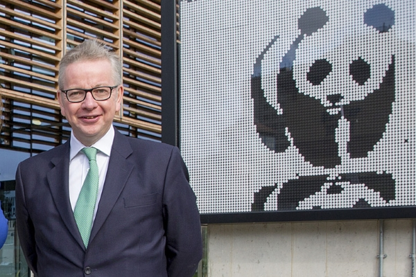 People: Michael Gove (photograph: Greg Armfield/WWF)