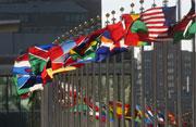 Flags, UN