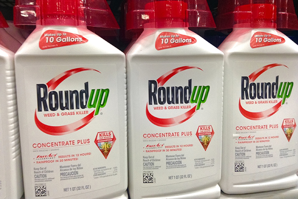 Chemicals, Roundup (photograph: Mike Mozart/CC BY-2.0)