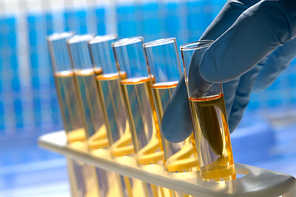 Chemicals, test tubes (photograph: Olivier Le Queinec/123RF)