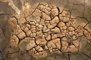 Climate, drought 1
