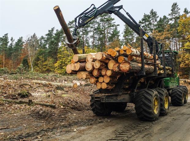 Forest clearance near Gdansk, Poland. Campaigners are concerned EU draft taxonomy criteria may encourage unsustainable bioenergy. Photo: Michal Fludra/NurPhoto via Getty Images