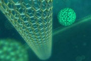Chemicals, nanotechnology