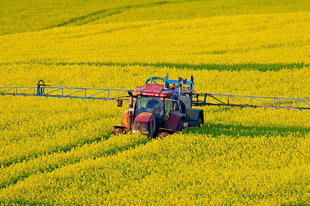 Pesticides: draft set to include specific target to halt and reverse the decline of pollinators (Photo by: Arterra/Universal Images Group via Getty Images)