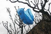 Plastic bag 3