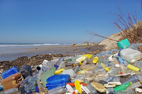 Pollution: plastic bottles on beach (Photograph: Fabien Monteil)