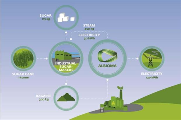 Sugarcane waste is a promising source of bioenergy in the tropics. Credit: Albioma