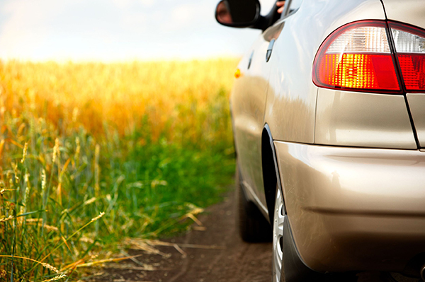 Domestic biofuels can help reduce greenhouse gas emissions, Sauter claims