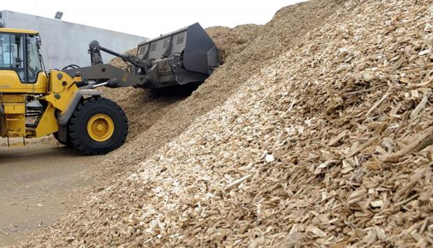 Waste wood ready to process