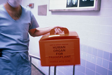 A policy of presumed consent for organ donations is needed (Photograph: SPL)