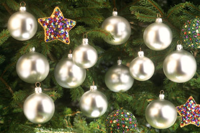 The total spend on DoH Christmas trees this year was £3,200 (Photograph: SPL)