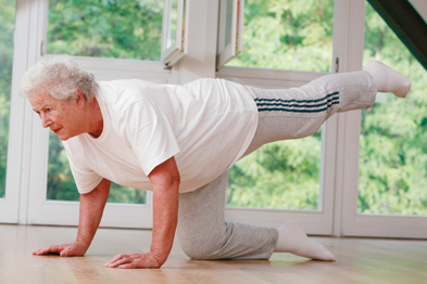 The core stability muscles are spread throughout the central body, and pilates and yoga are excellent programmes for developing them (Photograph: SPL)