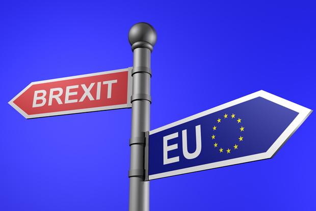 Risultati immagini per immagini brexit eu