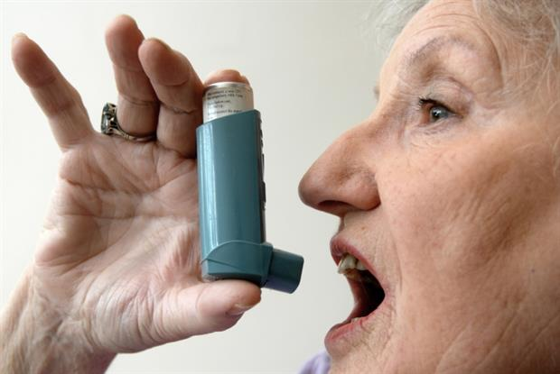 Asthma: GPs are urged to give more patients allergy tests (Photo: JH Lancy)