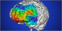 Epilepsy linked to deprivation