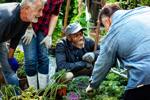 Social prescribing can involve gardening clubs which help tackle social isolation (Photo: iStock/Rawpixel)
