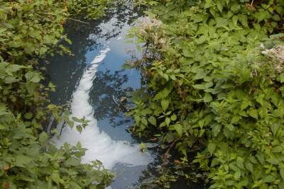 Detergent pollution in a tributary of the river Thames
