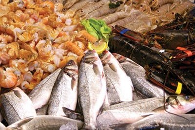 Mixed seafood display in fish monger (credit: Dreamstime)