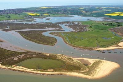 Hamford Water habitat reserve, Essex (credit: Mike Page)