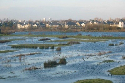 Wetlands provide free protection against flooding (CC-AS-2.0 Ian Day)