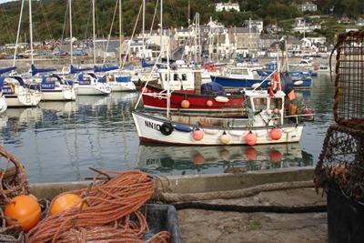 Lyme Regis harbour. Credit: Bryce Beukers-Stewart