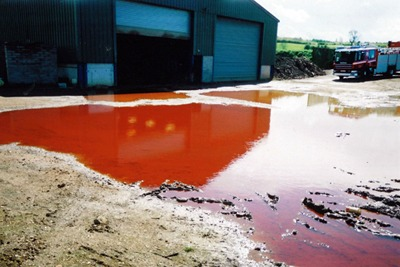Oil spill on Gogs farm, near Leighton Buzzard. Credit: Environment Agency